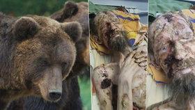 """Tajemství """"medvědího muže"""" odhaleno! Kazašský lékař prozradil, co je doopravdy zač"""