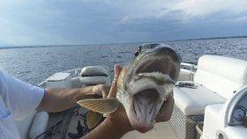 Ryba se dvěma tlamami: Žena vylovila z moře záhadného tvora
