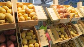 Kdy se sází brambory – pozor na jarní mrazíky!