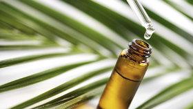 Zázrak jménem tea tree olej. Vyzkoušejte jeho skvělé účinky v domácnosti