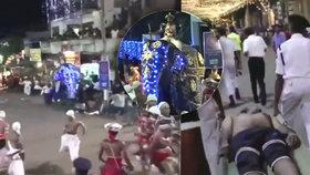 Útok slonů při slavnosti v dovolenkovém ráji: Nejméně 18 zraněných!