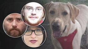 Majitel sháněl milenku pro psa: Měl to být dárek! brání se