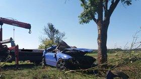 Řidič (†37) na Opavsku vyjel ze silnice a narazil do stromu. Na místě zemřel