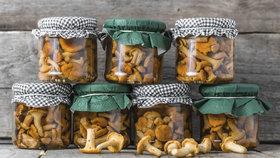 Jak zavařit houby. Připravte si výbornou delikatesu krok za krokem