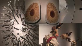 Sedimenty, vany a auta: Benediktu Tolarovi k okázalým výtvorům stačí málo, ukazuje výstava