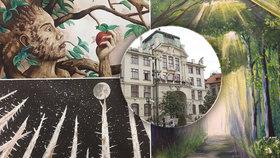 Výstava stírající věkové rozdíly napoví, jak vypadají duše stromů: Ty pražské trápí kůrovec