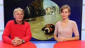 Vysílali jsme: Fotograf Josek o Czech Press Photo. Kdo pořídil nejlepší fotku?