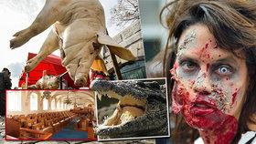 Tipy na víkend: Prahou poběží zombíci! Zajděte na vepřové hody, Exotiku nebo do Senátu