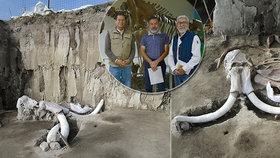 Unikátní objev: Přes 800 kostí mamutů našli archeologové v Mexiku