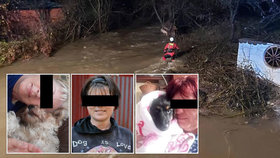 Katka, Zuzana a Zdenka zachraňovaly pejsky z útulku při povodni: Všechny se utopily!