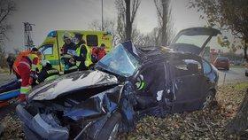 Auto na Brněnsku vyletělo ze silnice a narazilo do stromu: Žena na místě zemřela