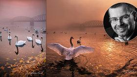 Labutě z Prahy bodovaly v celosvětové soutěži! Fotograf Peter (38) pozdravil slunce a dostal zlato