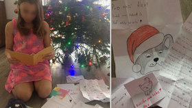 """Soud poslal Alexii (11) před Vánoci do ústavu na """"převýchovu"""": Neuvěřitelný ohlas od spolužáků"""