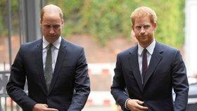 Harry málem králem? Kvůli koronaviru bude možná nucen pomoci Williamovi!