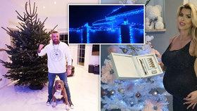 Terminátor elektřinou nešetří! Vánoční výzdoba Vémolova paláce u Prahy není pro každého