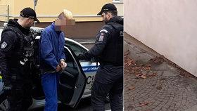 Agresivní mladík brutálně zbil starší manželský pár: Žena (65) má vážné následky, muže (†64) umlátil k smrti!