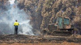 Další tragédie při boji s požáry v Austrálii. Na hasiče (†60) spadl strom