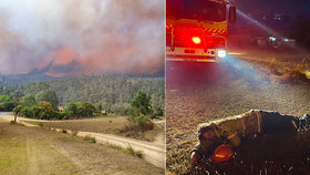 Vyčerpaní hasiči vzhlíží k nebi: Austrálie se dočká deště, všechny požáry ale neuhasí