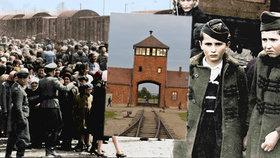 Barevné fotografie vězňů z Osvětimi nahánějí hrůzu: Musíme to dětem ukazovat, říká přeživší Češka (90)