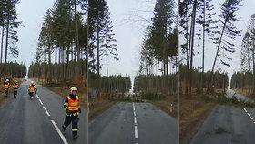Video boje o život: Kolem hasičů popadaly při vichřici stromy jako sirky