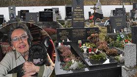 Smrt velké lásky Jiřiny Jiráskové (†81): Amálka už je v nebi!