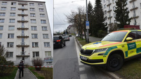 Matka s dcerou (10) vypadly z okna v 5. patře: Žena (†39) v nemocnici zemřela