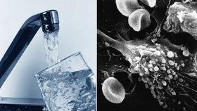 Rakovina z pitné vody? Zjištění vědců kontroval Brusel rázným vzkazem a zmínil normy