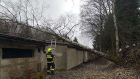 Na sever Čech se žene silný vítr, varují meteorologové. Může ničit budovy