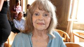 Smrt Evy Pilarové (†80): Týden před smrtí věřila, že je zdravá