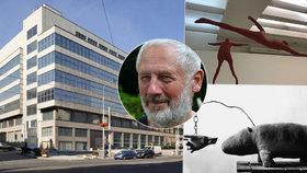 """""""Obecní sochař"""" vystavuje ve Veletržním paláci: Kurt Gebauer ozdobil sídliště Dědina nebo Dalejské údolí"""