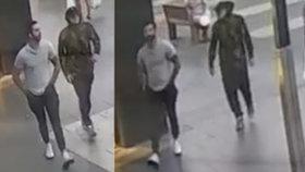 """V Sydney vrcholí """"toaleťákové"""" šílenství: Dva zlodějíčci si ze supermarketů odnesli 500 rolí!"""