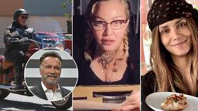 Cvičit, venčit, vařit! Jak žije Hollywood v časech koronavirových karantén?