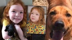 Holčičku hledali po lesích dva dny: Zachránil ji její milovaný pes