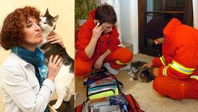 Útulkům a záchranným stanicím dochází peníze: Přece ta zvířata nenecháme uhynout!