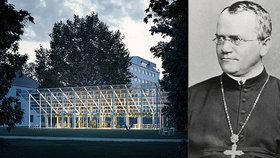Skleník, kde Mendel založil genetiku, smetla bouře: Po 150 letech ho nyní obnoví