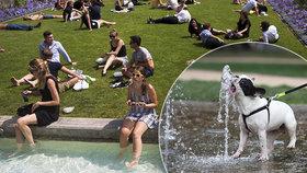 Jaké počasí přinese letošní léto? VČesku bude jako ve Středomoří, ukazují modely