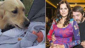 Ornella s manželem sdíleli rodinnou chvilku! Neohrozili ale miminko?