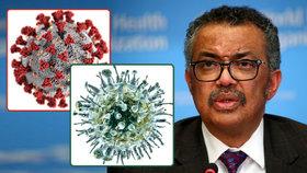 """""""Zpomalte,"""" varuje šéf WHO. Koronavirus je desetkrát smrtelnější než prasečí chřipka"""