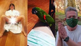 Reakce Aleše Hámy na odvážné foto Nely Boudové: Vyfotil si ptáka bez roušky!