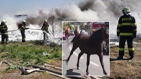 Masivní požár v Bratislavě se podařilo zlikvidovat: S ohněm hasiči bojovali čtyřiadvacet hodin