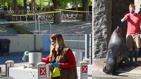 První týden znovuotevřené Zoo Praha: Třetina návštěvníků oproti normálu, tratila už 37 milionů