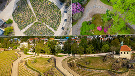 VIDEO: Unikátní záběry: Botanická zahrada tak, jak ji neznáte. Jak se mění okolí Fata Morgany?