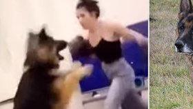 Strašné týrání zvířat: Žena si natočila, jak boxuje do nebohého pejska