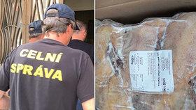 Dodávka plná neoznačeného kachního: Celníci v Praze zadrželi tunu masa