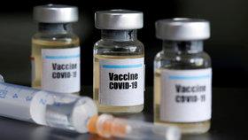 Vakcína bude do září, slíbila farmaceutická společnost. Její experti o tom pochybují