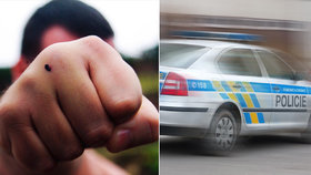 Kradl v obchoďáku, pak u Prahy zmlátil tři známé! Kriminálník je známá firma, skončil ve vazbě