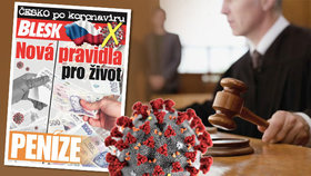 Koronavirus zastavil soudní řízení a vy se cítíte poškozeni? Jaká je šance na nápravu?