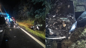 Na Českolipsku se srazila tři auta: 9 zraněných! Hasiči museli zachraňovat koně