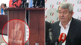 Studenti promítli komunistům na pultík Horákovou. Do Sněmovny je přivedl Kalousek