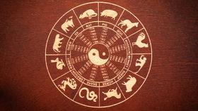 Horoskop na další týden: Buvoly a Zajíce podrží přátelé. A kdo se řítí do propasti?